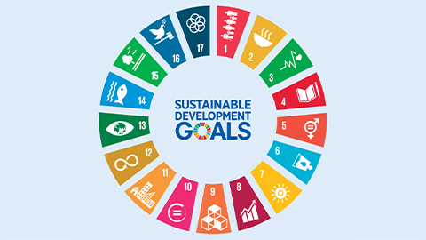 SDG Bonds: Their Time Has Come
