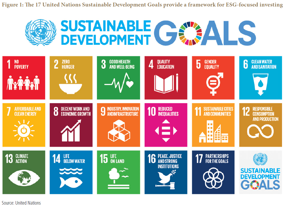Figure 1 is a diagram that shows the 17 United Nations Sustainable Development Goals (SDGs). Each square is labeled as a goal, ranging from Goal 1 (No Poverty) to Goal 17 (Partnerships for the Goals). Details within.